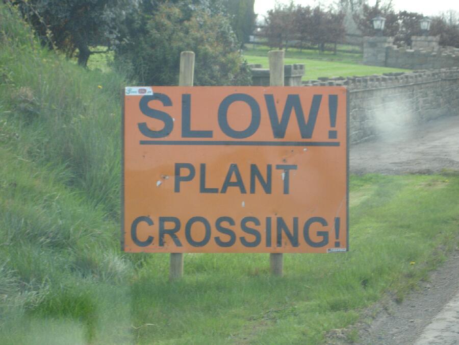 slowplant